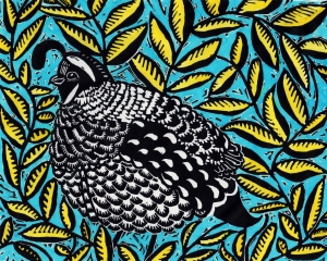 California Quail, painted linocut print, © Julia Forsyth