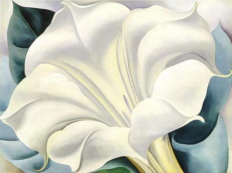 Georgia O'Keeffe, White Trumpet Flower, 1932